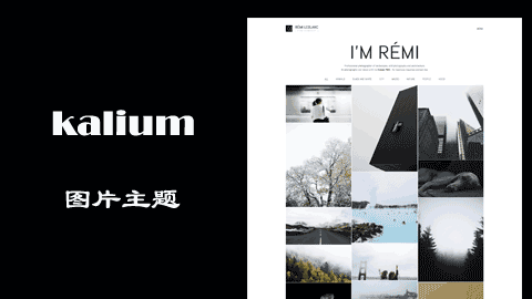 WordPress多功能主题免费下载- kalium中文版